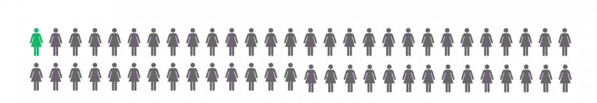 Entwicklung zugelassene Rechtsanwaeltinnen 1970 bis heute 2016