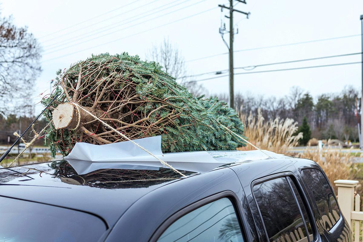 Rechtsfragen rund um Weihnachten