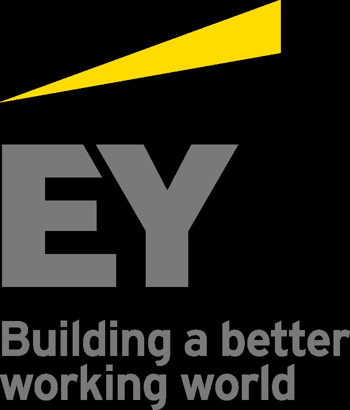 Ernst & Young Wirtschaftsprüfungsgesellschaft m.b.H.