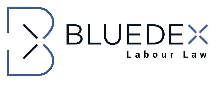 BLUEDEX | PartG mbB